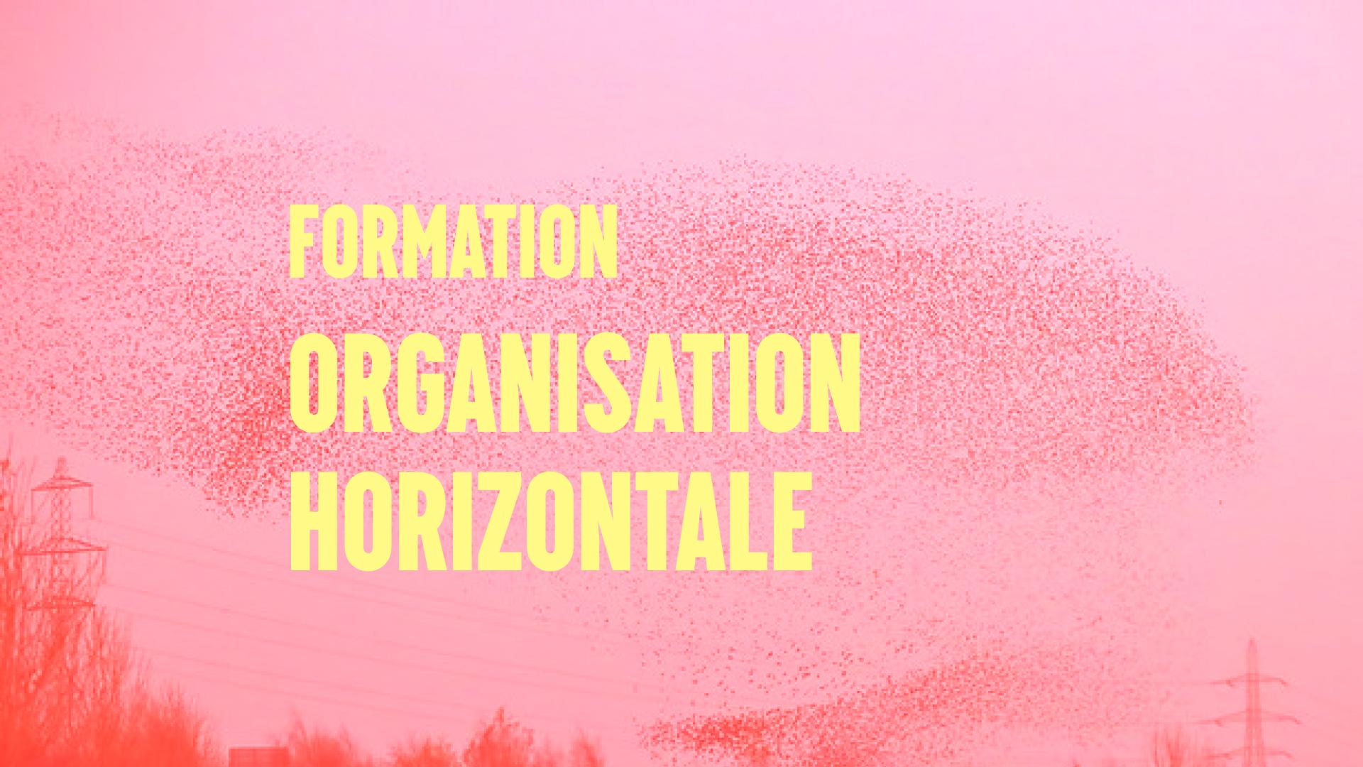Formation Organisation Horizontale